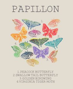 Butterfly Infographic - by Hattie Grimm