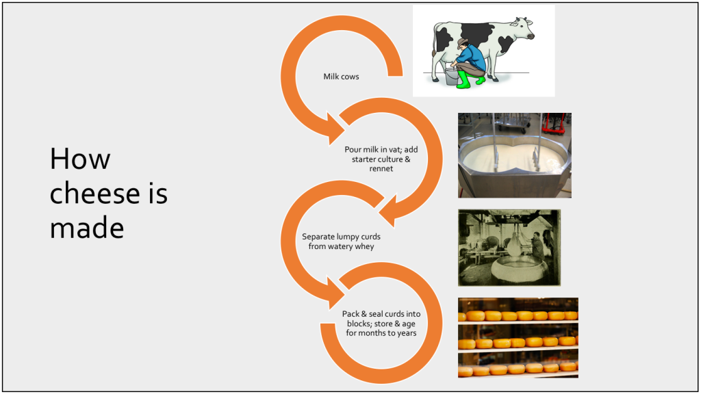 Example Slide Demonstrating the Cheesemaking Process