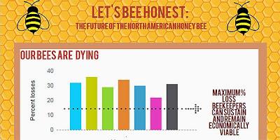 Lets Bee Honest Thumbnail Image