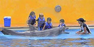 Amandas Educational Digital Story Thumbnail Image