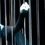 String Theory Thumbnail Image